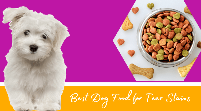 Photo of Best Dog Food for Tear Stains – Top rated Dry Food for your Healthy Dog